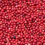 The Mind Bog-gling Awesomeness of Cranberries